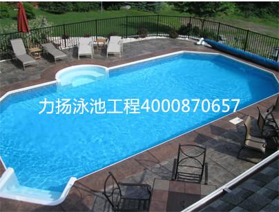 原装进口钢结构泳池
